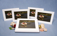 Holiday shell on the beach (boxed set of 8)