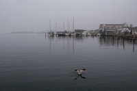 Silver Lake in the fog (#208)