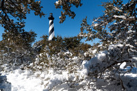Snow-covered branches frame the Cape Hatteras Lighthouse